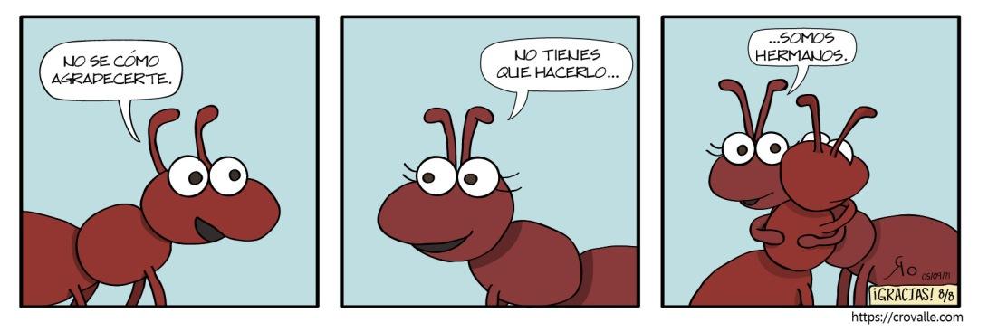 Hermanos8